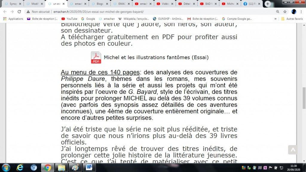 2020.09.20 MICHEL essai en PDF - emachan article (1B)